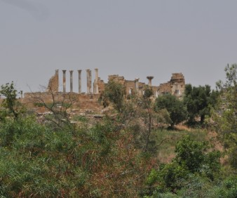 Volubilis Archeological tour