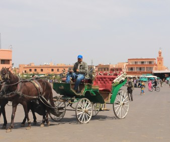 Buggy luxury tour of Marrakech